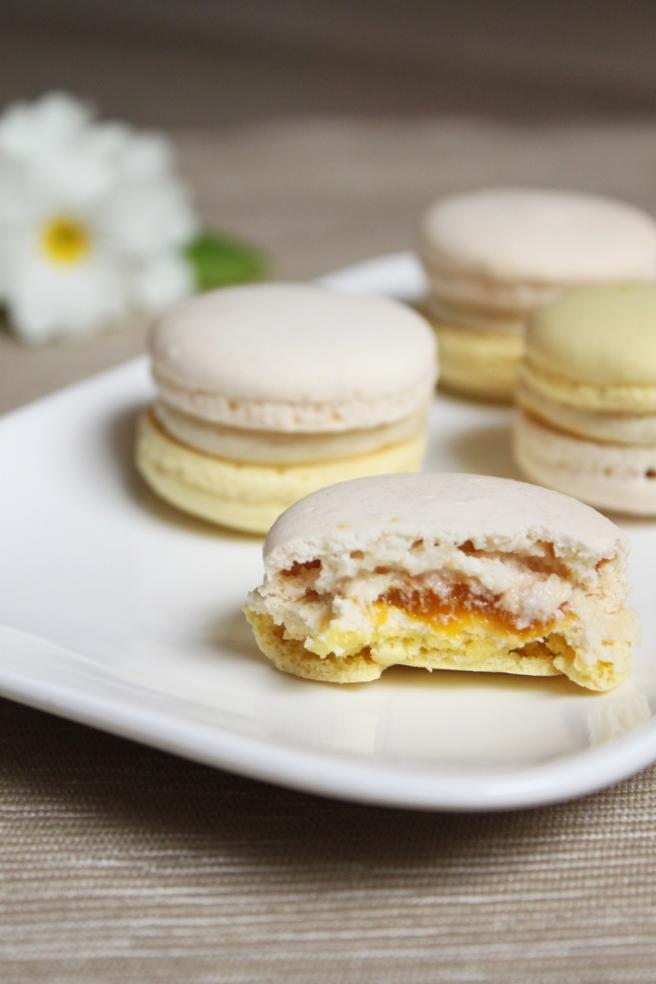 macaron-mangue-jasmin7