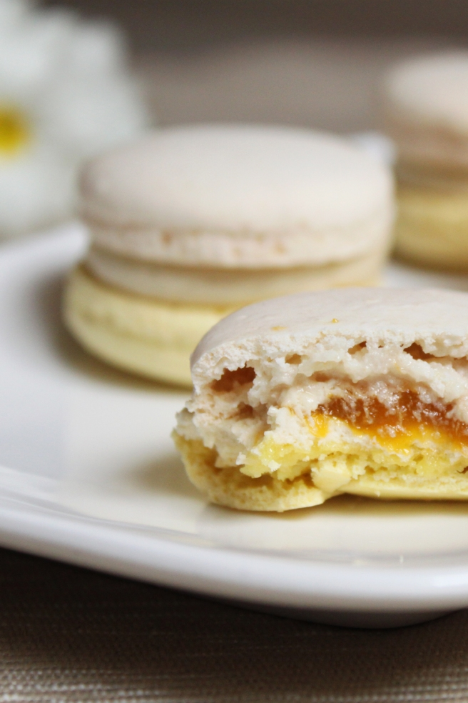 macaron-mangue-jasmin8